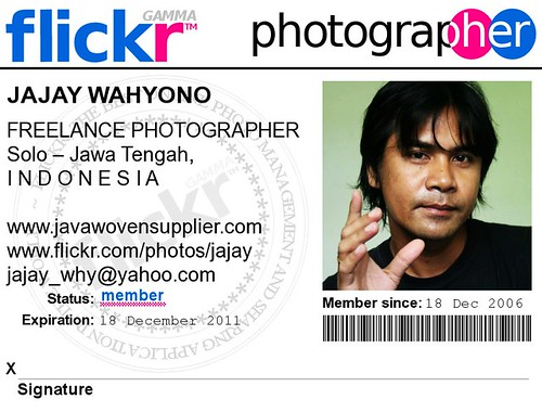 My Id Card My Flickr Member Card The Icon Buddy S Photo