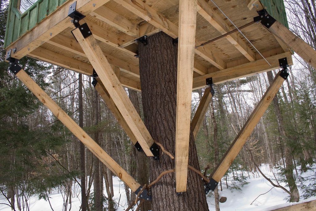 Beams The Truss Work For The Tree House None Of The