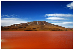 Laguna Colorada | by hallenhalma