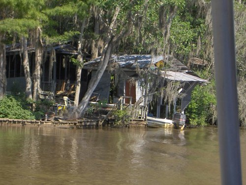 fishing camp on the pearl river honey island swamp louis