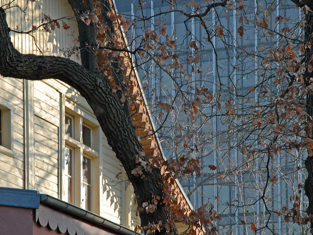 Le jardin d 39 acclimatation et le mnatp le mus e national - Musee en herbe jardin d acclimatation ...