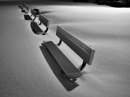 Winter Benches! | by judo_dad1953