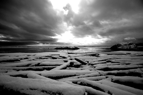 Snowy driftwood, Long Beach (b&w) | by Ruth and Dave