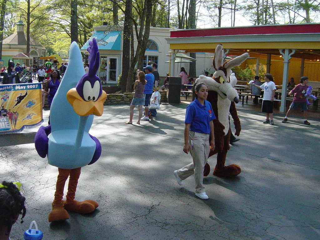 looney tunes coyote and roadrunner