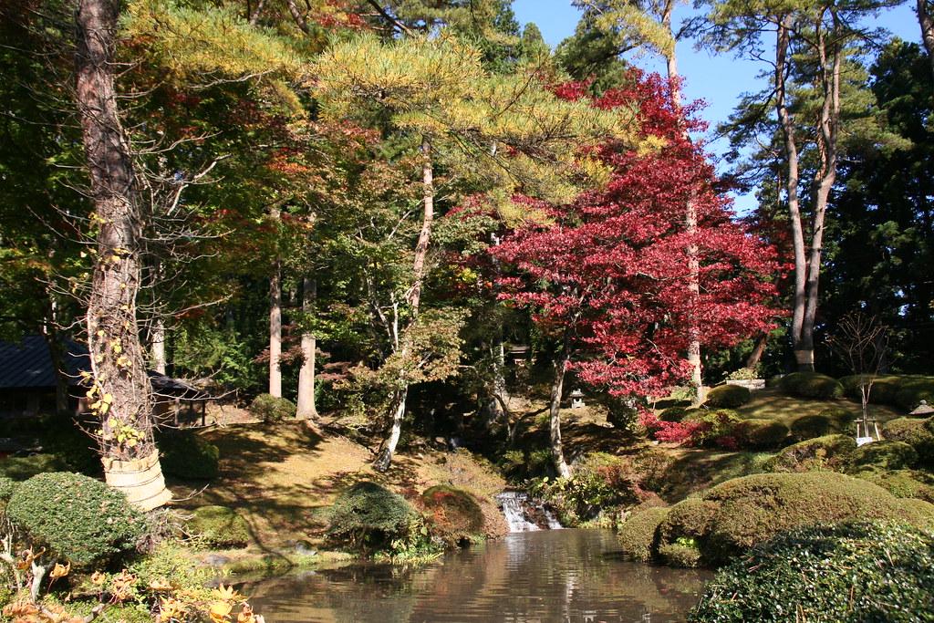 Shogun Island Park Menu