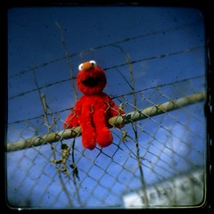 Elmo on the fence | by ReyGuy
