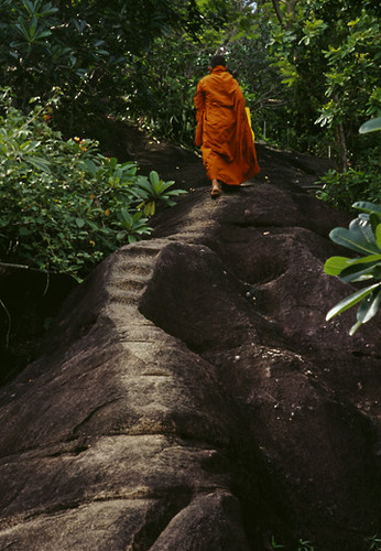 forest dale buddhist single women Browse online buddhist personals for a chance of finding a girl that has the same spiritual and religious beliefs come online and find your perfect woman, buddhist personals.