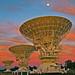 Antenas 1, 2 y 3 de ATCA con la puesta de sol
