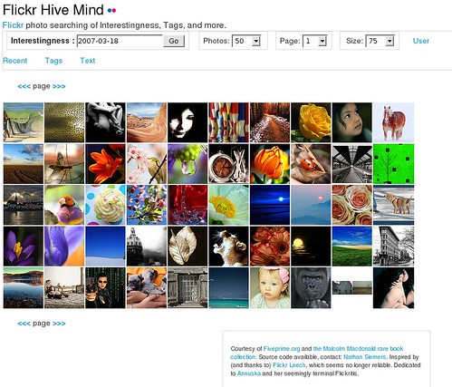 Flickr Hive Mind | by nosha