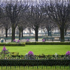 Rita Crane Photography:  Gardens of Notre Dame, Jardin Jean XXIII, Paris | by Rita Crane Photography