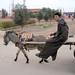 maroc sur la route