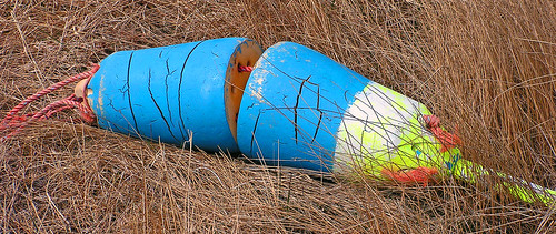 Lobster buoy | by Jean Knowles
