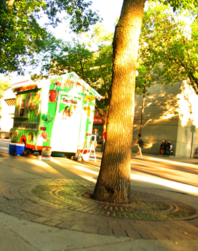 Food Carts Library Mall Hours