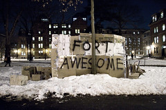 Fort Awesome, Harvard Yard | by drgandy