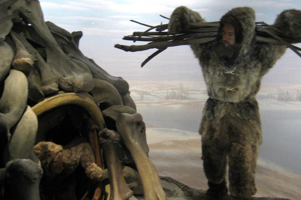 Nyc Amnh Spitzer Hall Of Human Origins Cro Magnon Dio
