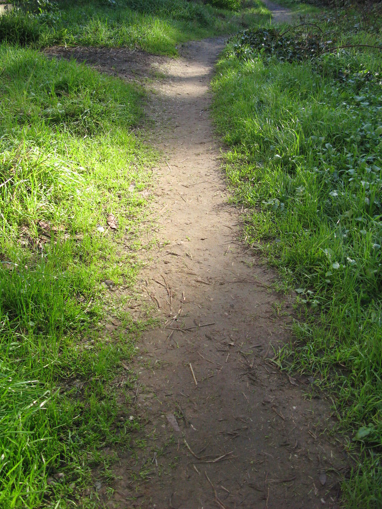 Sunlit Path | A well-worn path in the Glen Park ...