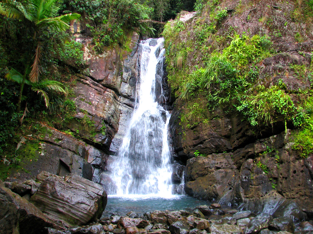 La Mina Waterfall El Yunque Rain Forest Sierra Luquillo Flickr