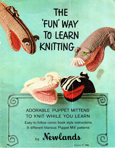 Cover: The 'Fun' Way to Learn Knitting | by Evester