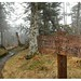 Appalacian Trail Highest Point