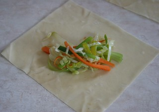 Egg Roll Step One | by Dianne's Dishes