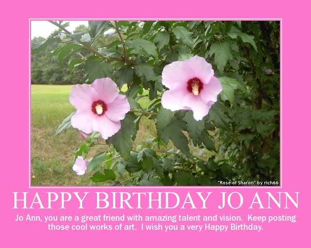 happy birthday joann Happy Birthday Jo Ann | wishing you all the best!! You can v… | Flickr happy birthday joann