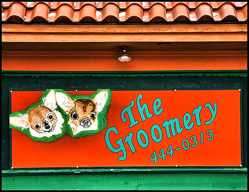 Groomery | by FotoEdge