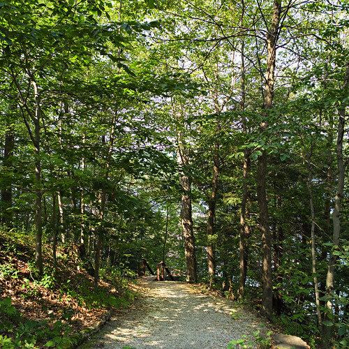 Robinson Crusoe Path | by Skaneateles Suites
