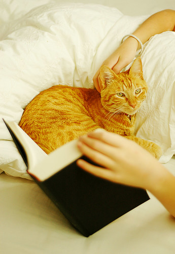 A good book and a cuddle. | by cindyloughridge