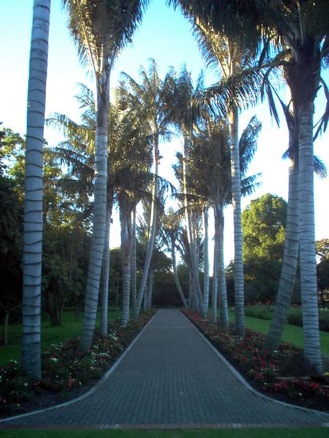 Jardin botanico bogota 18 victor hugo cardenas flickr for Jardin botanico bogota