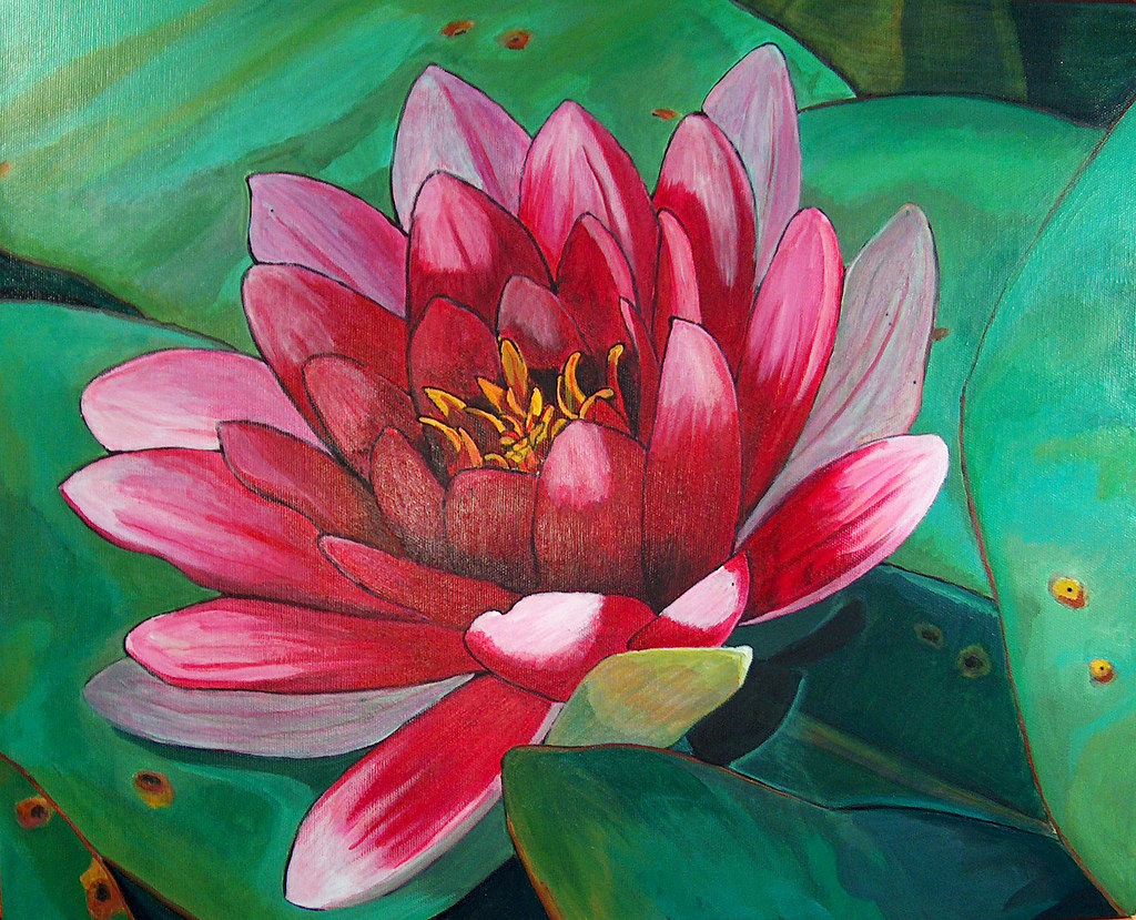 Art Lotus Flower 16x20 Acrylic On Canvas I Think This Lo Flickr