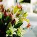 18th street flowers