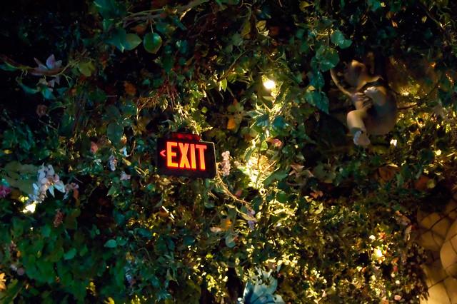 Rainforest Cafe Atlantic City Hours