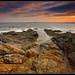 Rhode Island rocks!