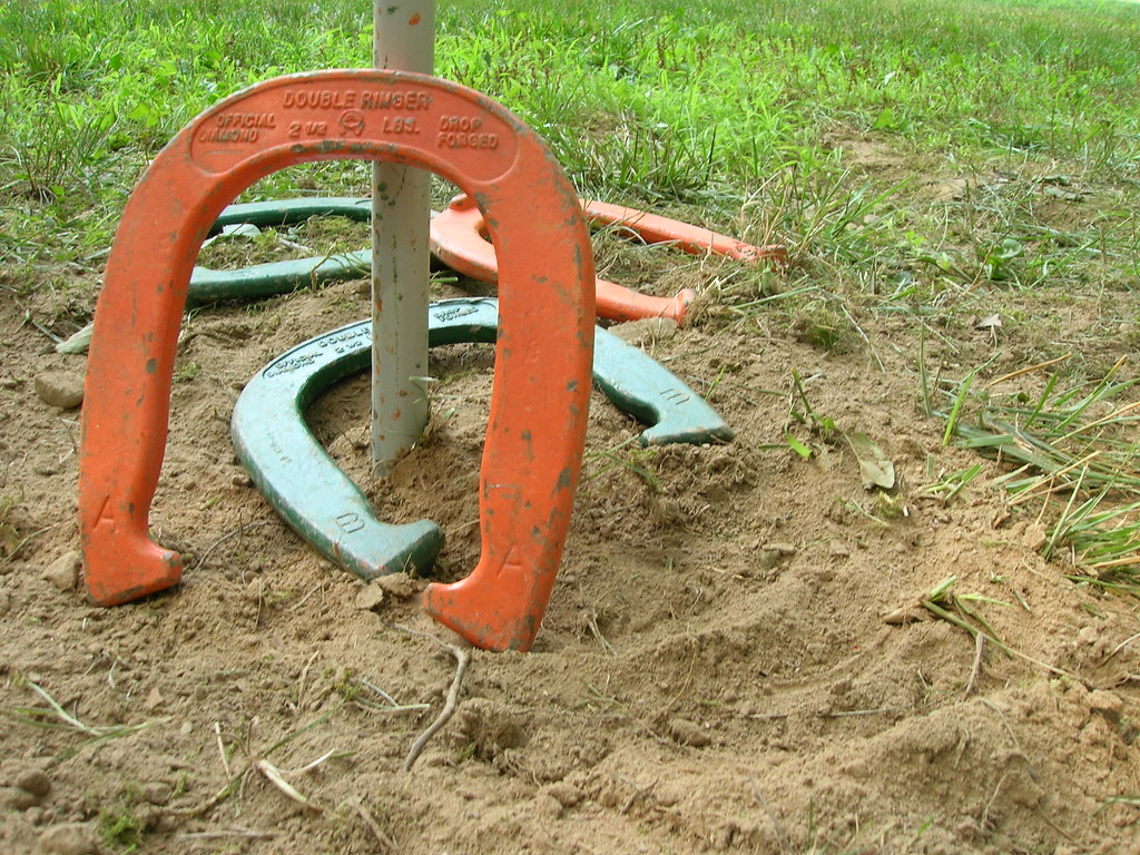 Image result for Horseshoe game