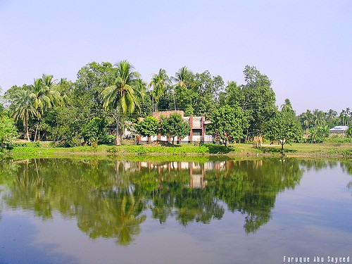Village house typical country house in bangladesh for Bangladesh house picture