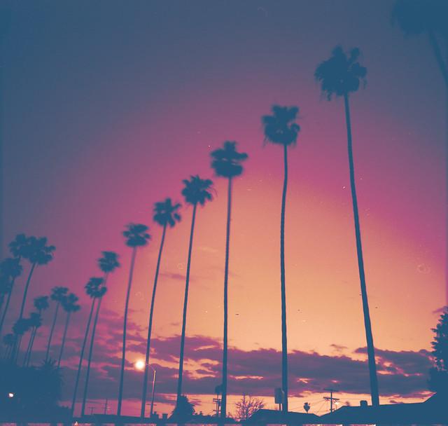 Beautiful Nature Los Angeles: Los Angeles, Ca. Mamiya RB67 ISO 80