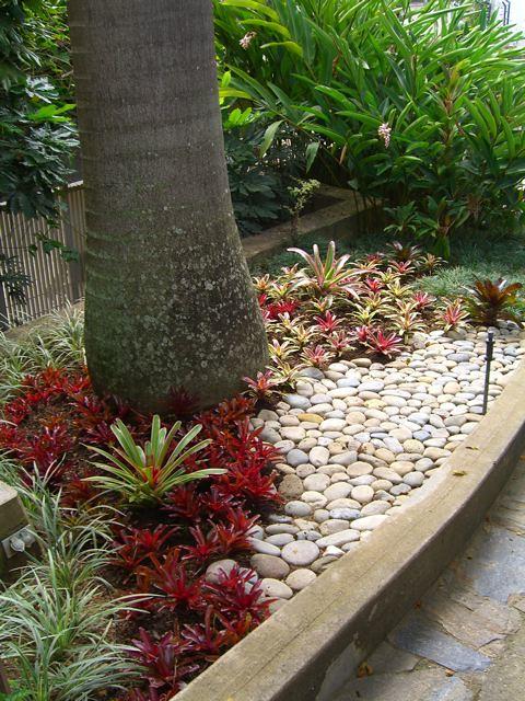 Jardines con bromelias y orquideas 4 bromelias for Casa con jardin valencia