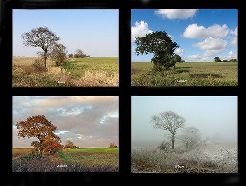 The four seasons | Same place,different time. ......Kirkby ...