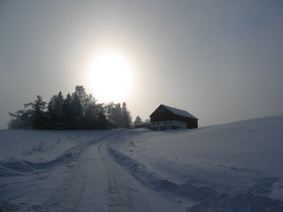 Diffuse winter sun | by Bernt Rostad