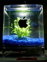Mac G4 Cube Fish Tank | by Small Dog Electronics