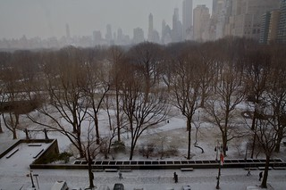 Central Park Snow | by jetrotz