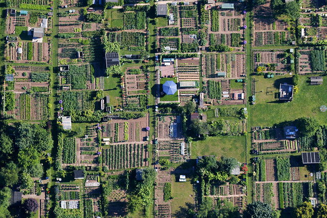 Image result for aerial photo of allotments