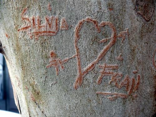 Como Encontrar El Amor Verdadero