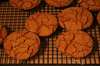 Gingersnaps | by spi516
