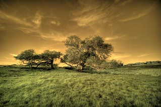 Lynch Infrared HDR | by Josh Sommers