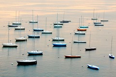 Boston Harbor Boats | by Today is a good day