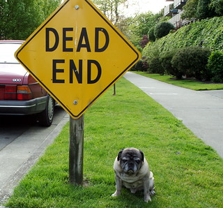 Roscoe with Dead End Sign | by zoomar