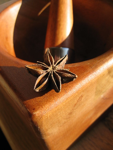 Star Anise | by Cookgypsy