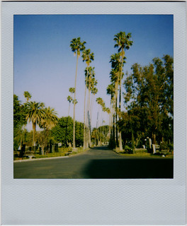 Hollywood Forever Cemetery | by stutefish