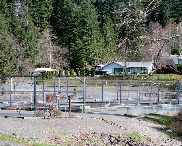 Speelyai bay fish hatchery on lake merwin duane for Lake merwin fishing